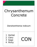 Chrysanthemum concrete