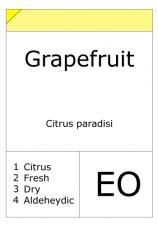 Grapefruit (Pink)