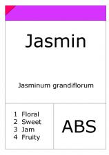 Jasmin Egypt